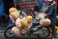 Wietnamczycy to mistrzowie przewożenia na swoich motocyklach dosłownie wszystkiego