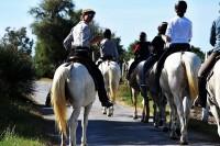 Tu magiczna kraina CAMARGUE oraz jeźdźcy na koniach rasy camargue