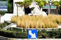 """Rondo stolicy Camargue, miasteczka Saintes-Maries-de-la-Mer i """"siwy koń morski"""""""