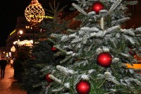 Stołeczne iluminacje świąteczne 2017