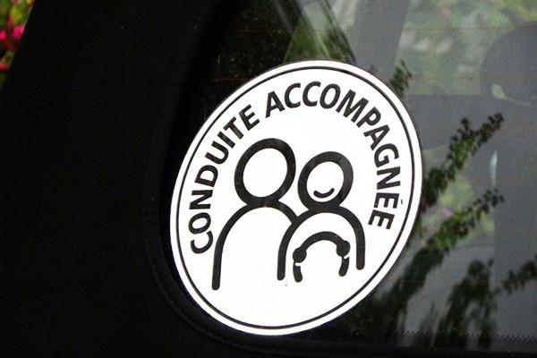 Jazdy z osobą towarzyszącą: 49% na TAK, 48% mówi NIE