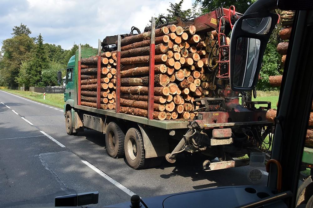 Transporty drewna niszczą drogi