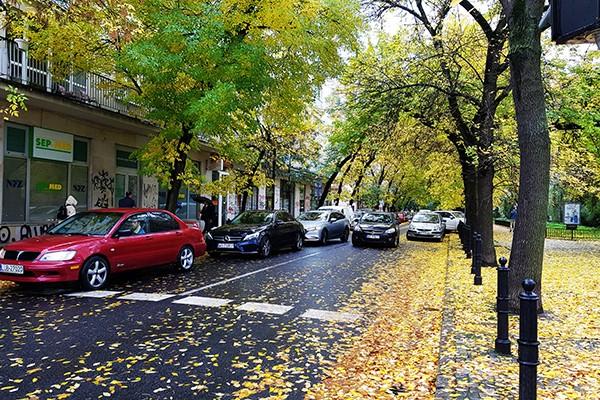 Pięć rzeczy, o których kierowca powinien pamiętać jesienią