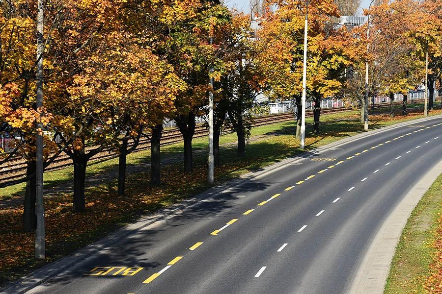 Czy jesienna melancholia zwiększa ryzyko wypadku drogowego?