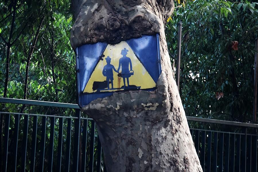 Kontrole utrzymania znaków drogowych