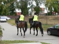 Drogą publiczną wierzchem na koniu