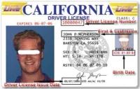 Prawo jazdy z USA - czy legalne?