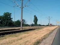O umieszczaniu znaków dla kierujących tramwajami i źle ustawionych znakach