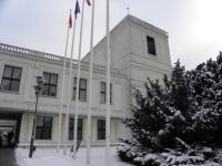 Nowela ustawy o kierujących w Sejmie w dniu 3 stycznia 2013 r.