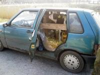 Czy to pojazd osobowy?