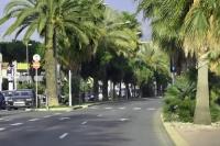 We Francji nawierzchnie dróg coraz jaśniejsze i bezpieczniejsze
