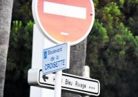 J. Michasiewicz: Boulevard de la Croisette i wiele piękna (fotoreportaż)
