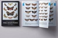 """""""Atlas motyli Polski"""". Fuzja naukowej rzetelności z piękną szatą graficzną"""