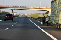Wysokość barier wzdłuż dróg ma znaczenie