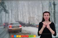 Monika Folwarczny. Projekt/y dla Głuchych przyszłych kierowców