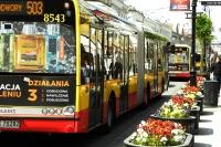 Autobusowy priorytet w sygnalizacji świetlnej